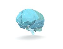 ALDRING & HELSE – interaktiv hjerne