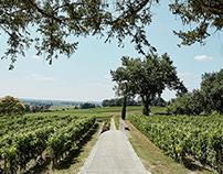 Wine Story 3