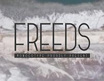 Freeds | Modern typeface (FREE)