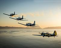 Los Angeles Tiger Squadron