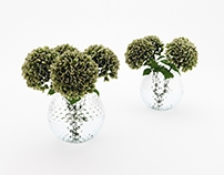 FREE 3D model - Hydrangea bouquet