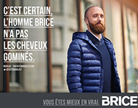Brice collection autumn winter 2015-2016