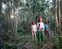 Prey Lang: A Forest on the Brink of Destruction