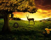 Die Reise auf der Morgenröte