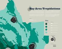 Bay Area Trepidations