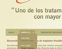 Web Design 2009