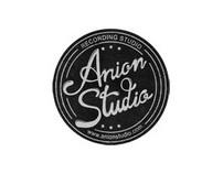 Anion Studio - visual identity and graphic design