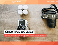 Agency Landing Pages