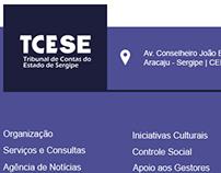 TCE-SE Web Site
