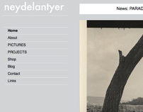 Neyde Lantyer - Artists' Website