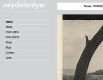 Neyde Lantyer - Artists' Website