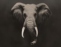 Ilustración digital Elefante