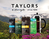 Taylors of Harrogate -  Ad graphics