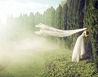 Washingtonian Bride & Groom Magazine