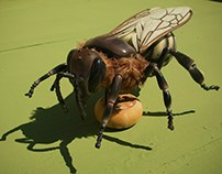 ape mellifera ligustica