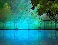 Digital Landscape (photoshop cs5 )