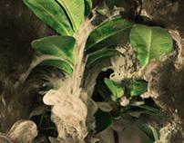 SUB-PLANT