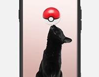 Pokemon Go Cases!!!