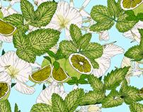 Cuban Mariposa Pattern