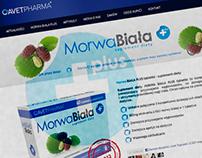 Morwa Biała Plus Web Design