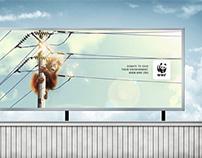 Save OrangUtan Campaign