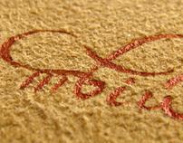 Ukrainian calligraphy