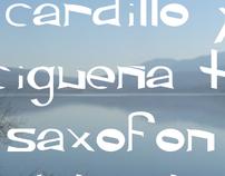 Tipografía en minúscula