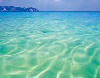 Let's sea