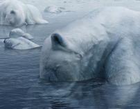 Greenpeace I Climate change