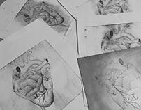 GRAVURE - Organe