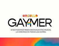 Gaymer Pride / Acción Gay