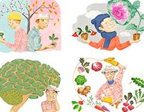 editorial illustrations for Gardening Aust magazine