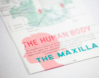 The Human Body Stamp Collection