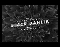 A Brief History of Noir Murders: The Black Dahlia