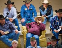 Texas Livestock Auction