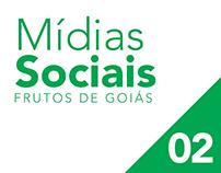 Rede social Frutos de Goiás 02