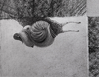 detail_snail
