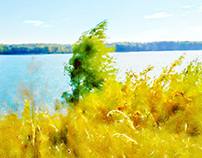 Wind over the lake