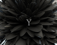 Amplifying The Typography Experience, Y