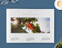 Floral brochure