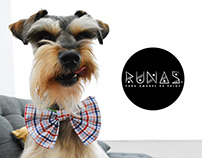 Website Design & Motion Graphics for RUNAS