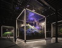 CGI: The cube