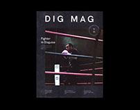 DIG Magazine — Nov. 2016