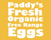 Paddy's Eggs