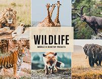 Free Wildlife Mobile & Desktop Lightroom Presets