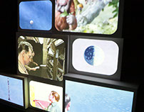 The Essence of Ladybird - Multiscreen Mapped Projection