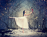 NUTCRACKER by Jason Bell