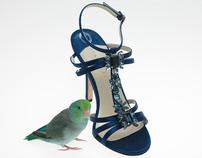 Still  Life- Shoes / Handbags / Garments
