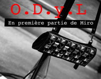 Photography for a concert - Paris // La Dame de Canton