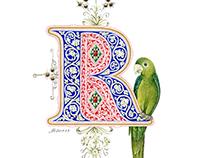 Letter «R»